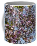 Saucer Magnolia Or Tulip Tree Magnolia X Soulangeana Coffee Mug