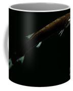 Sickle Snaggletooth Coffee Mug
