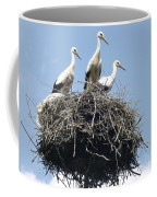 3 Storks In The Nest. Lithuania Coffee Mug