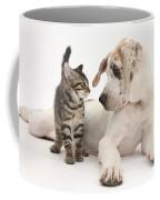 Tabby Kitten & Great Dane Pup Coffee Mug