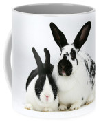 Two Rabbits Coffee Mug
