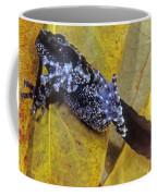 Vietnamese Moss Frog Coffee Mug