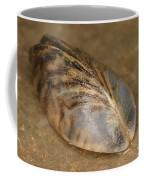 Zebra Mussel Coffee Mug
