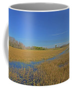 35- Grassy Waters Coffee Mug