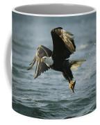 An American Bald Eagle In Flight Coffee Mug