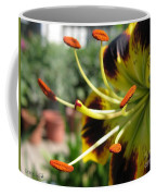 Asiatic Lily Named Black-eyed Cindy Coffee Mug
