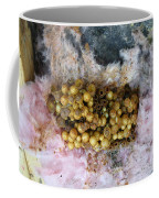 Bumblebee Nest Coffee Mug