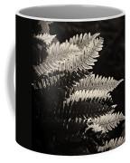 Common Polypody Coffee Mug