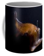 Deep Sea Angler Coffee Mug