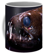 Dragonfish Coffee Mug