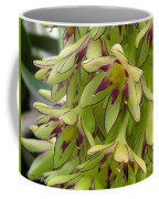 Eucomis Named Bicolor Coffee Mug