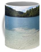 Freshwater Reef Coffee Mug
