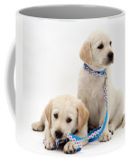 Goldidor Retriever Puppies Coffee Mug by Jane Burton