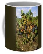 Grapes Growing On Vine Coffee Mug