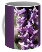 Hyacinth Named Splendid Cornelia Coffee Mug