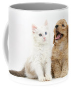 Kitten And Puppy Coffee Mug