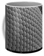 Mosquitos Eye Coffee Mug