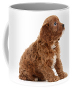Puppy Coffee Mug