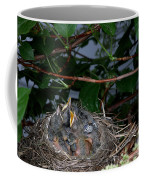 Robin Nestlings Coffee Mug