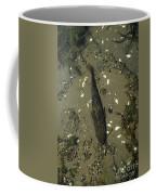 Rock Bass Coffee Mug
