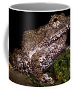 Rusty Robber Frog Coffee Mug