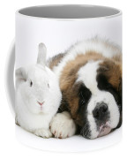 Saint Bernard Puppy With Rabbit Coffee Mug