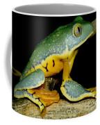 Splendid Leaf Frog Coffee Mug