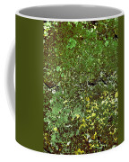 Stoneface At Hossa With Stone Age Paintings Coffee Mug