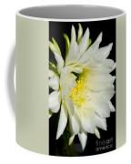 White Cactus Flower Coffee Mug