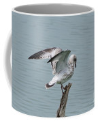 Wing Test Coffee Mug