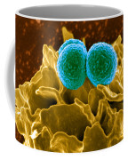 Methicillin-resistant Staphylococcus Coffee Mug by Science Source