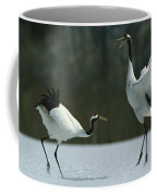 A Pair Of Japanese Or Red Crowned Coffee Mug