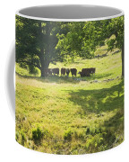 Cows Grazing On Grass In Farm Field Summer Maine Coffee Mug