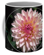 Dahlia Named Valley Porcupine Coffee Mug