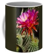 Dark Pink Cactus Flower Coffee Mug