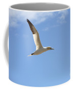 Gannet In Flight Coffee Mug