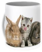 Kitten And Rabbits Coffee Mug