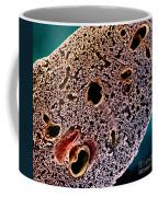 Mouse Lung, Sem Coffee Mug