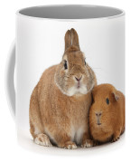 Rabbit And Guinea Pig Coffee Mug