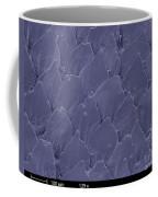 Shark Skin, Sem Coffee Mug