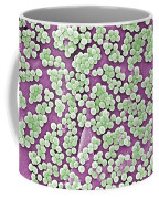 Methicillin-resistant Staphylococcus Coffee Mug