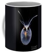 Cockatoo Squid Coffee Mug
