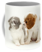 Dog And Cat Coffee Mug by Jane Burton