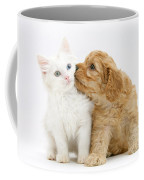 Kitten And Puppy Coffee Mug