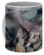 Mudpuppy Coffee Mug