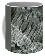 Rods And Cones In Retina Coffee Mug by Omikron