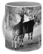 Two Stripes Coffee Mug