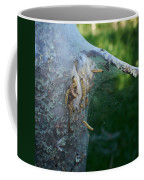 Bird-cherry Ermine Caterpillars Coffee Mug