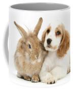 Cocker Spaniel And Rabbit Coffee Mug