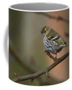 Eurasian Siskin Coffee Mug
